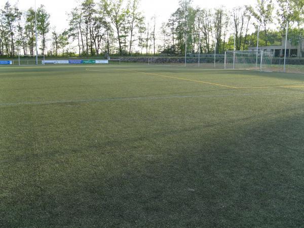 stadion_frankenfurt_4_20070607_1968563812